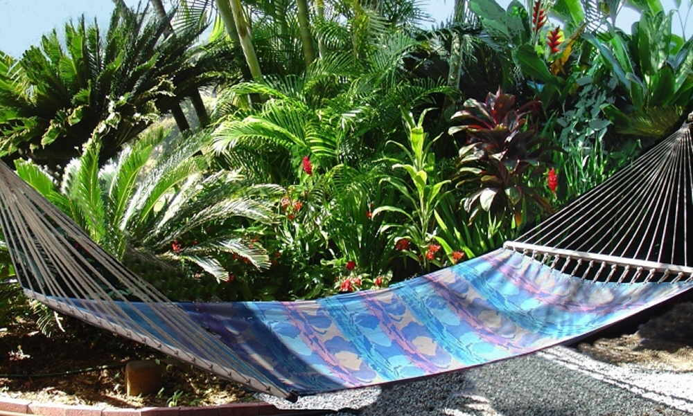 Hammock in tropical garden